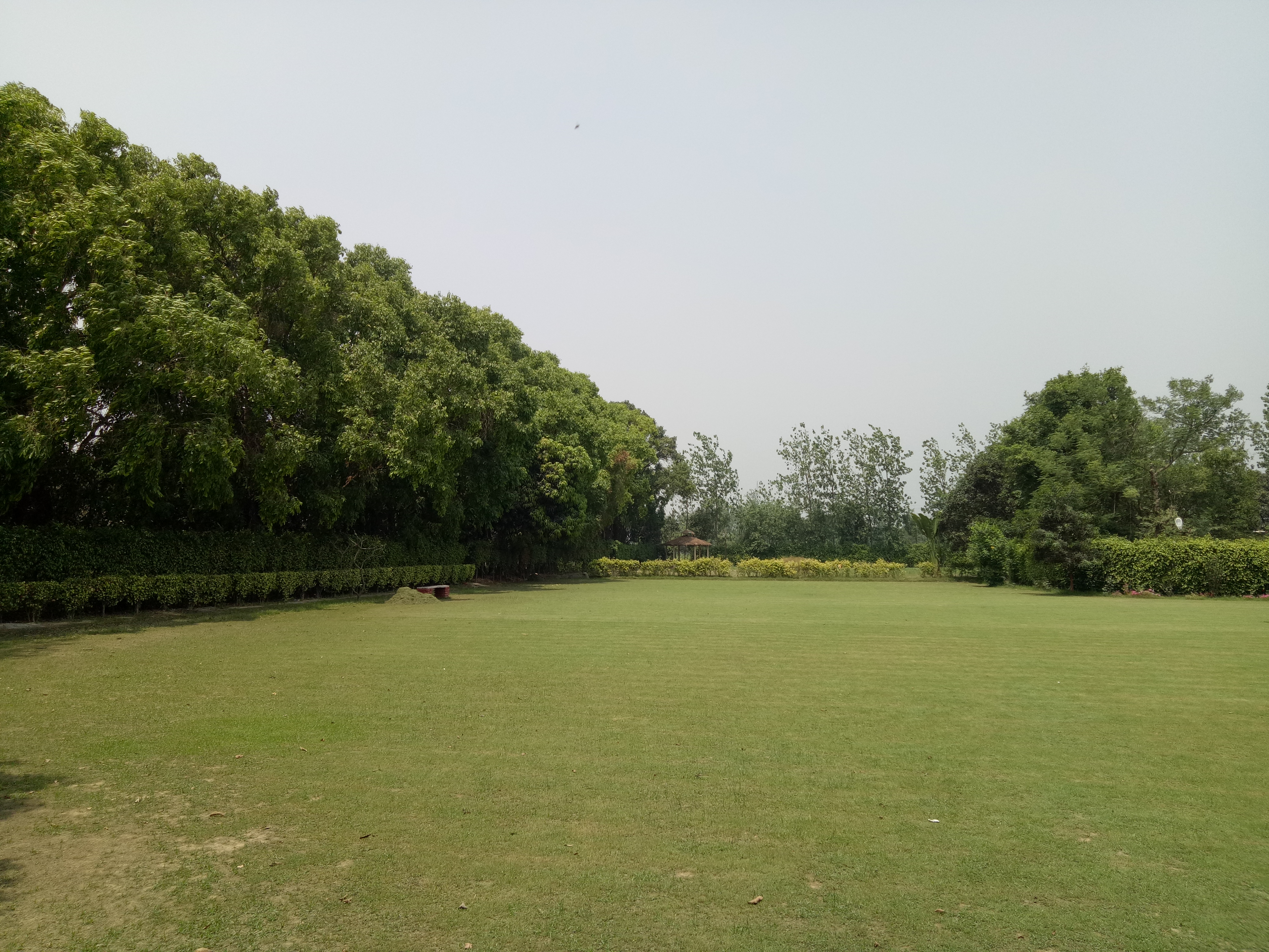 lawns baghaan orchard retreat