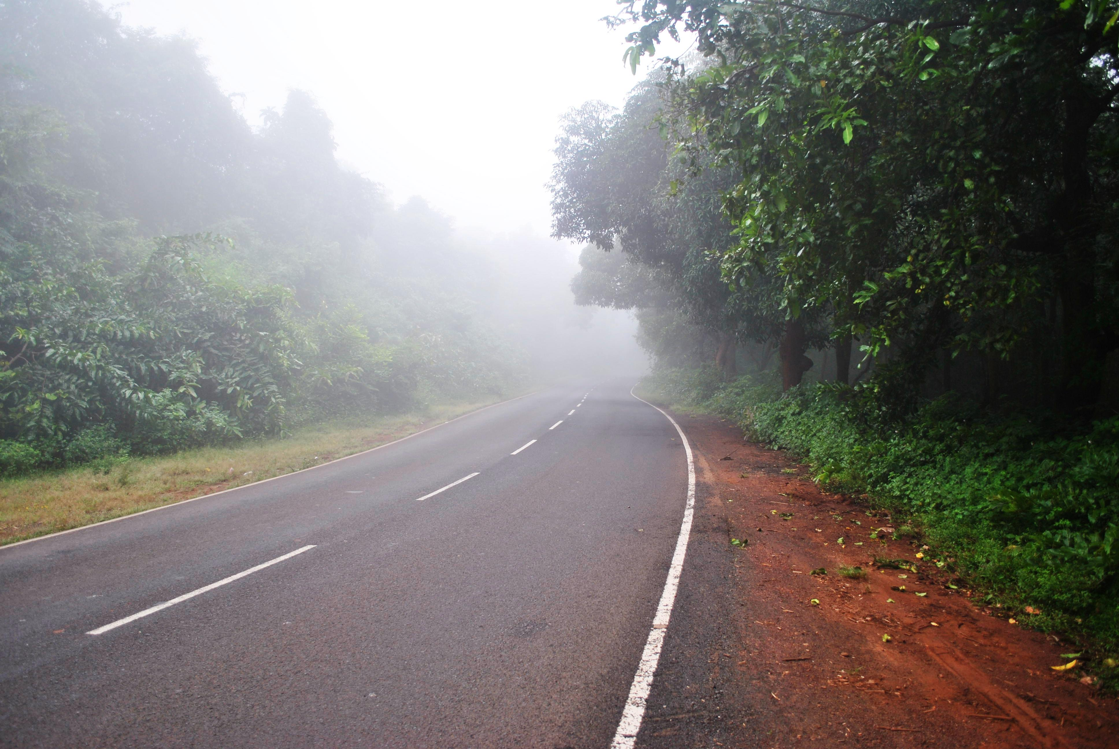 Goa road trip