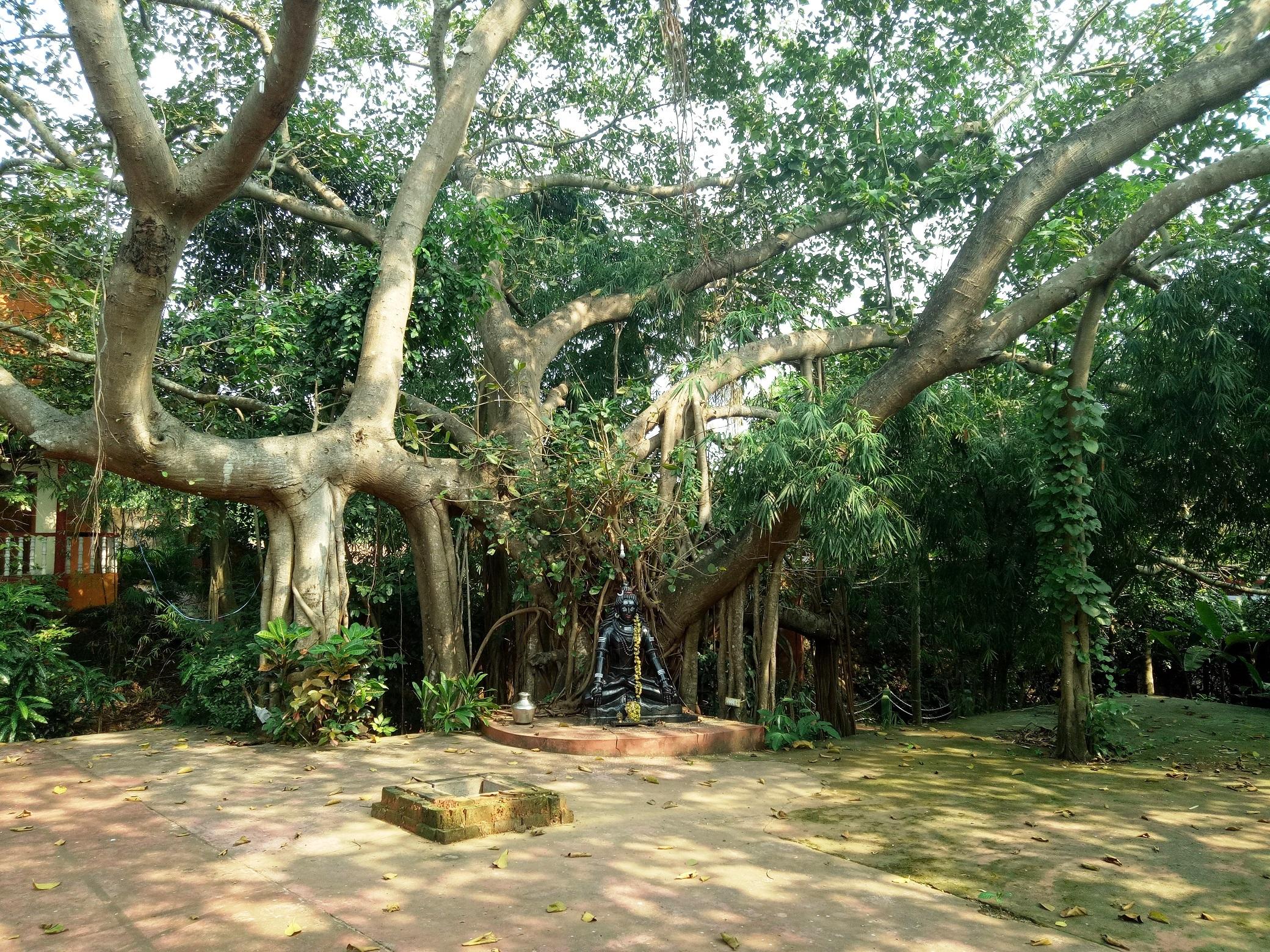 Namaste Sanjeevani Resort Kudle